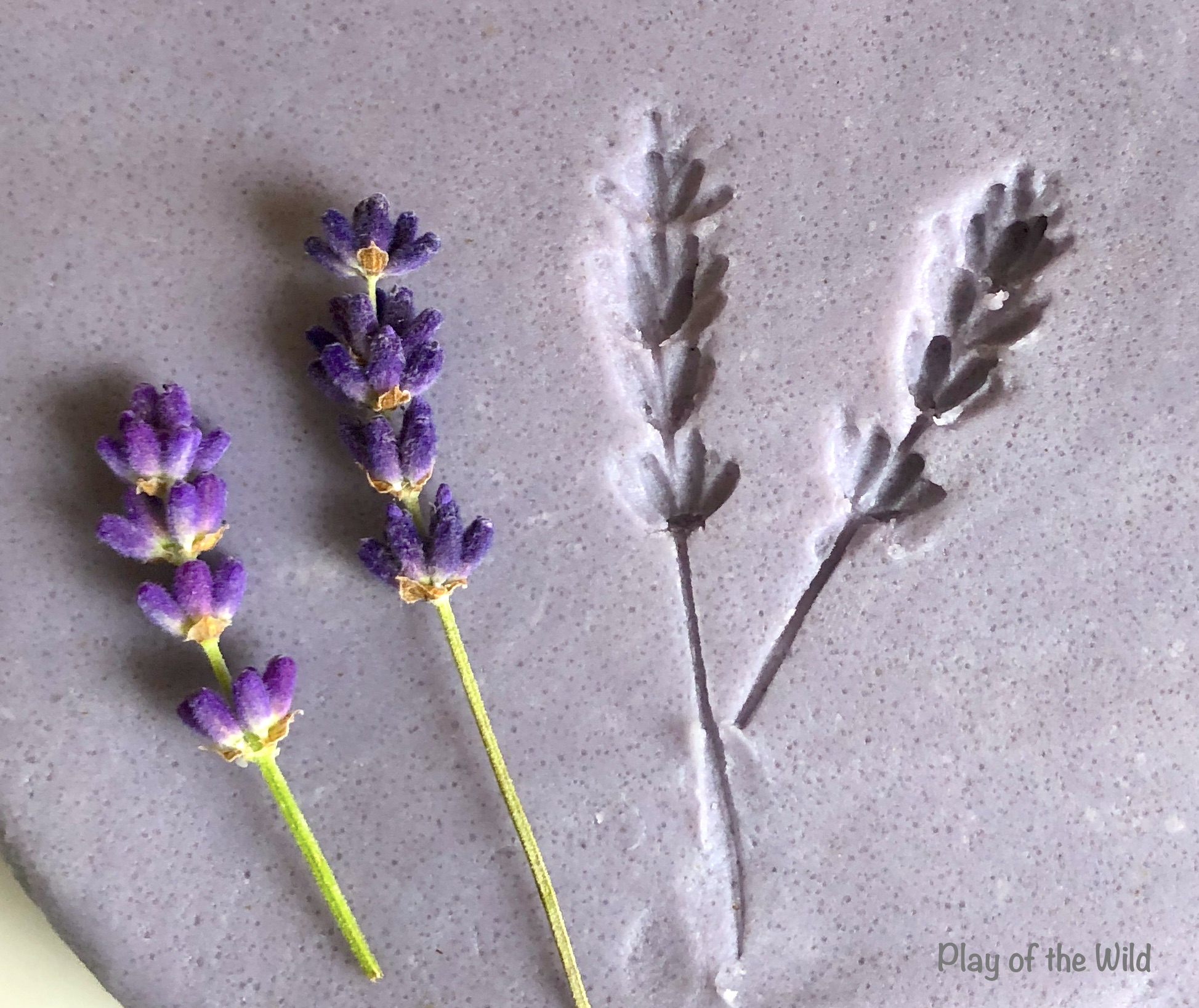 Aromatherapy Playdough Recipe. Lavendar playdough.